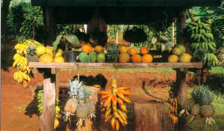fruitspolynesiensmall.jpg
